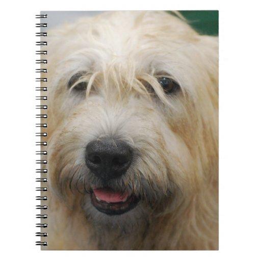 Glen of Imaal Terrier Notebook