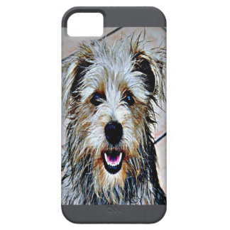 Glen of Imaal Terrier Pop Art iPhone 5 Cover