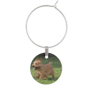 Glen of Imaal Terrier Wine Glass Charms
