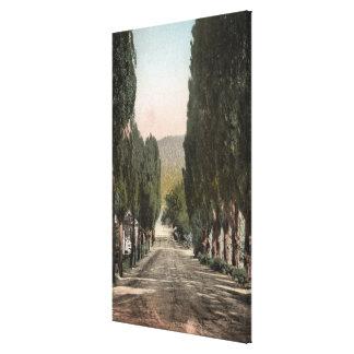 Glenwood Springs, Colorado Canvas Print