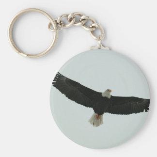 Gliding bald eagle key ring