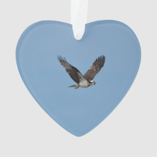 Gliding Osprey Ornament