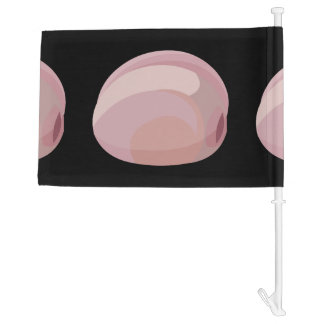 Glitch Food oysters prairie Car Flag