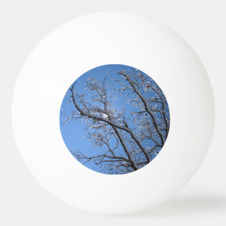 Glittering Ice Snow Covered Trees Ping Pong Ball