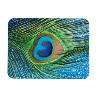 Glittery Blue Peacock Feather Still Life Rectangular Photo Magnet