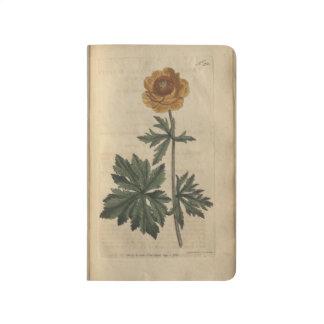 Globe Flower Journal