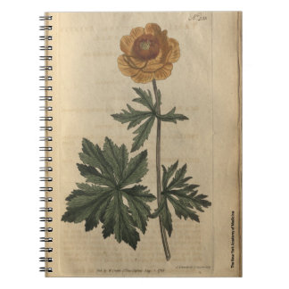 Globe Flower Spiral Notebook