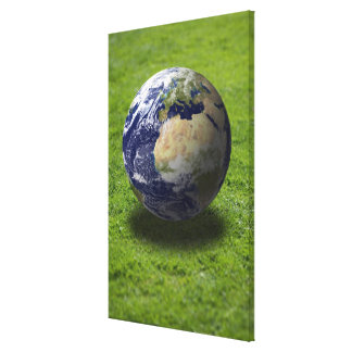 Globe on lawn 2 canvas print