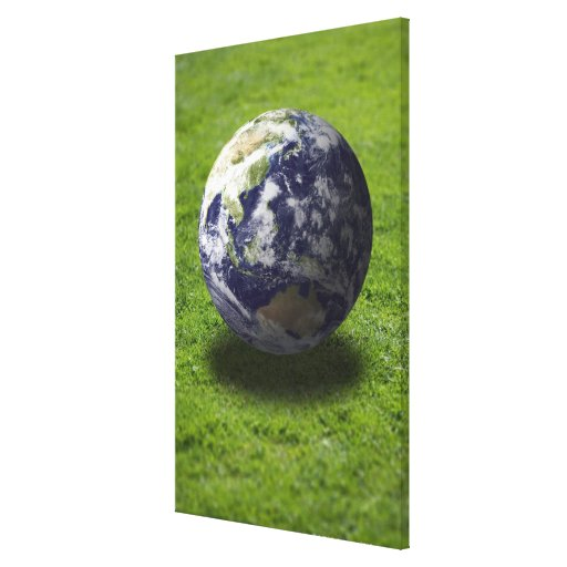 Globe on lawn stretched canvas prints