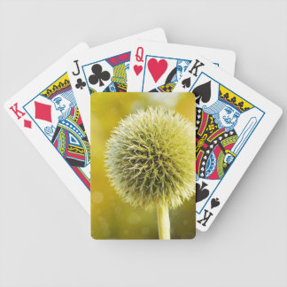 globe-thistle-599653 bicycle playing cards