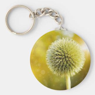 globe-thistle-599653 key ring