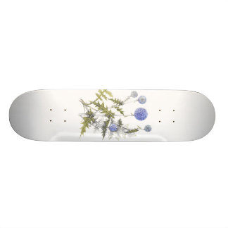 Globe Thistle Collection 21.6 Cm Old School Skateboard Deck