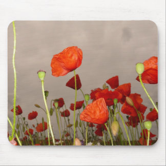 Gloomy Day Red Poppies Mouse Pad