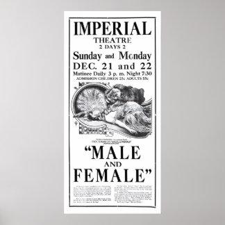 Gloria Swanson 1919 vintage movie ad poster