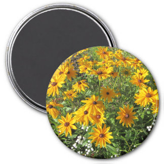 Gloriosa Daisies Indian Summer Magnet
