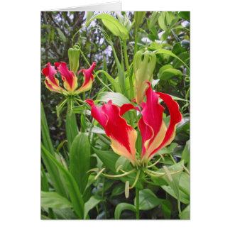 Gloriosa Lilies Card