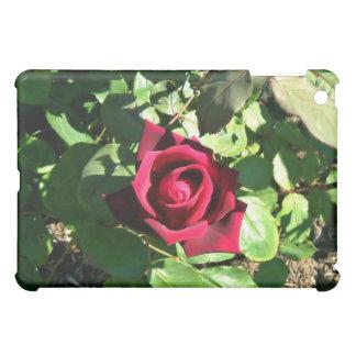 Glorious bright red rose iPad mini case