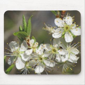 Glorious Spring Mousepad Mouse Pad