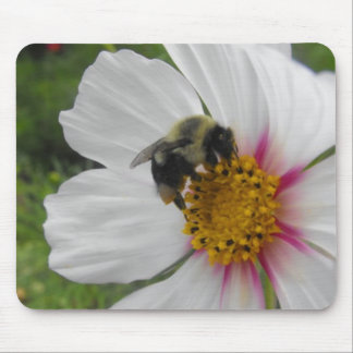Glory Bee Mouse Pad