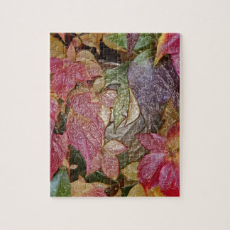 Glossy autumn leaves, Wax-Look 001.1 Puzzles