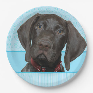Glossy Grizzly in Blue Kitchen & Dining 9 Inch Paper Plate