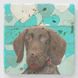 Glossy Grizzly in Blue Kitchen & Dining Stone Beverage Coaster