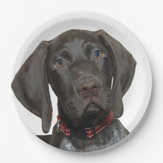 Glossy Grizzly Paper Plate