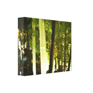 Glowing Bamboo in Tokyo, Japan Stretched Canvas Print