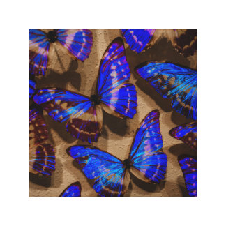 Glowing Butterfly Specimens Canvas Print