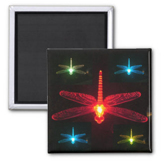 Glowing Dragonflies Magnet