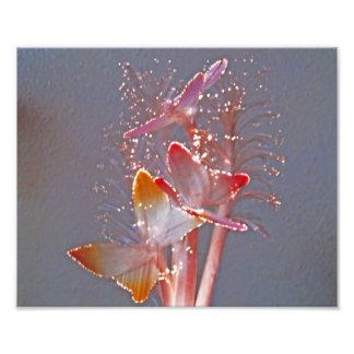Glowing Fiber Optic Butterflies Photo Print