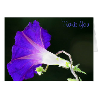 Glowing Morning Glory Thank You Card