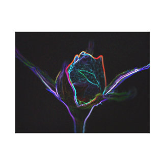 Glowing Rosebud Canvas Prints