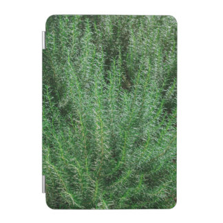 Glowing Rosemary Bushes iPad Mini Cover