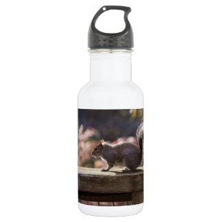 Glowing Squirrel 532 Ml Water Bottle