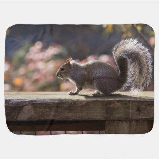 Glowing Squirrel Baby Blanket