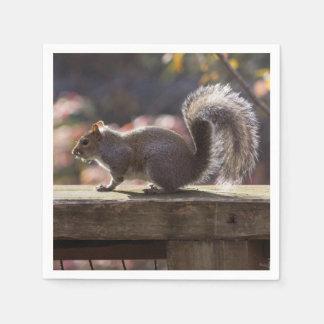 Glowing Squirrel Disposable Serviette