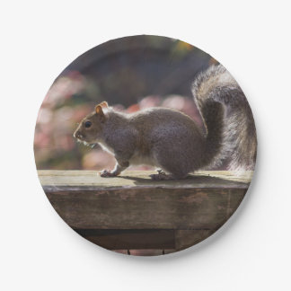 Glowing Squirrel Paper Plate