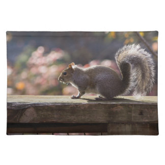 Glowing Squirrel Placemat
