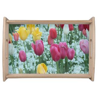 Glowing Tulip Garden Serving Tray