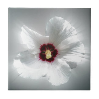 glowing white petals small square tile