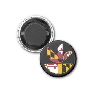 GMD Magnet