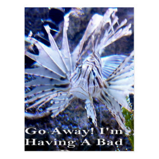 Go Away I'm Having A Bad Day Shirts, Hats, Gifts Postcard