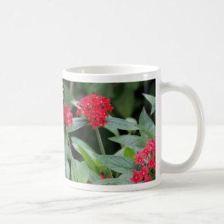 GO GREEN!  Butterfly Beauty Basic White Mug