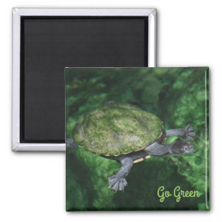 Go Green Turtle Magnet