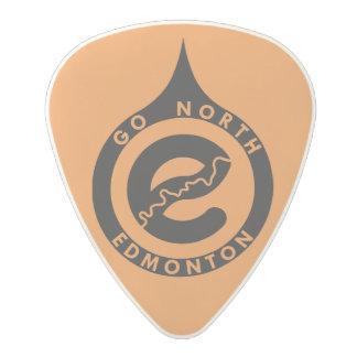 Go North Guitar Pick