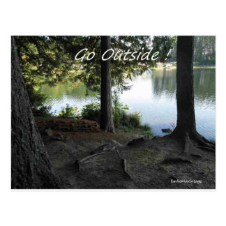 Go outside see the trees see the lake postcard