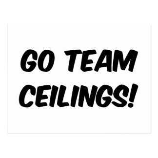 Go Team Ceilings Ultimate Fan Postcard