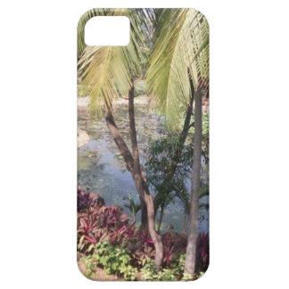 Goa India Garden iPhone 5 Cases