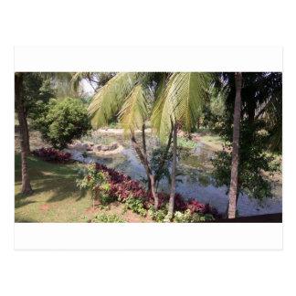 Goa India Garden Postcard